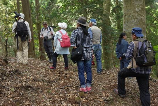 第二回奇跡の森の撮影会