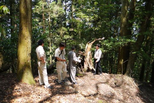 森林の調査と整備計画