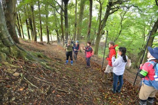 秋季ブナ林撮影会第一回