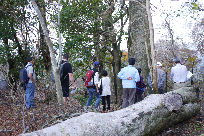 北摂SATOYAMA国際セミナーの皆様がブナ林に見学にお越しくださいました。